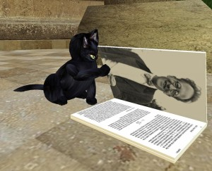 Cat reading quantum physics_003